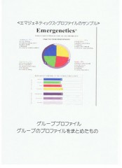 <エマジェネティックス・プロファイルのサンプル>