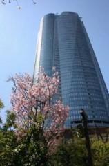 六本木ヒルズ40階にてセミナー開催報告
